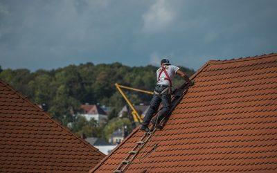 Pourquoi est – il indispensable de démousser régulièrement sa toiture?